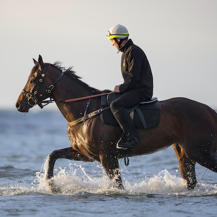 Winx-CaddenBen-10092017-1000 - WINX (Street Cry - Vegas Showgirl) at Altona Beach.  Ridden by Ben Cadden.  Photo - Bronwen Healy.  The Image is Everything....