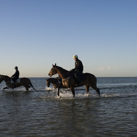 Winx-CaddenBen-10292017-6919 - Triple Cox Plate champion WINX has her regular recovery session at Altona Beach the day after equalling the immortal Kingston...