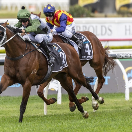 YesYesYes-BossGlen-20191019-2327 - Yes Yes Yes (Rubick - Sin Sin Sin) ridden by Glen Boss wins the 2019 TAB Everest (1200m) at Royal Randwick. 19 October...