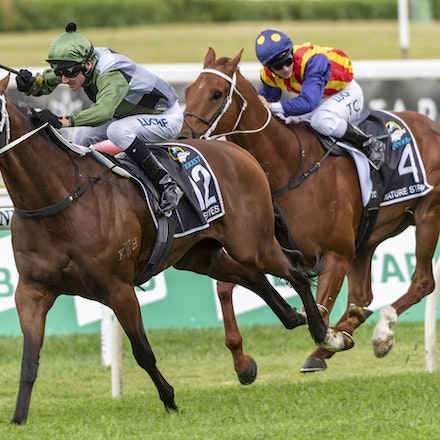 YesYesYes-BossGlen-20191019-2332 - Yes Yes Yes (Rubick - Sin Sin Sin) ridden by Glen Boss wins the 2019 TAB Everest (1200m) at Royal Randwick. 19 October...