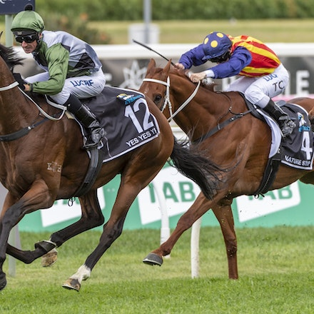 YesYesYes-BossGlen-20191019-2334 - Yes Yes Yes (Rubick - Sin Sin Sin) ridden by Glen Boss wins the 2019 TAB Everest (1200m) at Royal Randwick. 19 October...