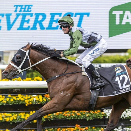 YesYesYes-BossGlen-20191019-2348 - Yes Yes Yes (Rubick - Sin Sin Sin) ridden by Glen Boss wins the 2019 TAB Everest (1200m) at Royal Randwick. 19 October...