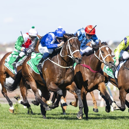 Winx-BowmanHugh-10062018-4007 - WINX (Street Cry - Vegas Showgirl) wins the G1 Turnbull Stakes, her 28th consecutive win.  Ridden by Hugh Bowman.  Photo...