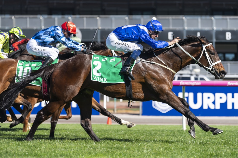 Winx-BowmanHugh-10062018-4026 - Photo by Bronwen Healy.  The Image is Everything - Bronwen Healy Photography.