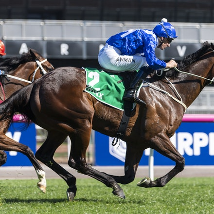 Winx-BowmanHugh-10062018-4029 - WINX (Street Cry - Vegas Showgirl) wins the G1 Turnbull Stakes, her 28th consecutive win.  Ridden by Hugh Bowman.  Photo...
