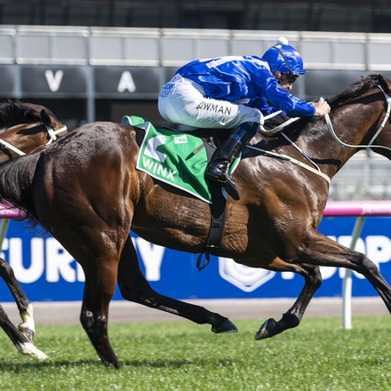 Winx-BowmanHugh-10062018-4030 - Photo by Bronwen Healy.  The Image is Everything - Bronwen Healy Photography.