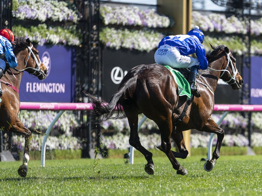 Winx-BowmanHugh-10062018-4043 - Photo by Bronwen Healy.  The Image is Everything - Bronwen Healy Photography.
