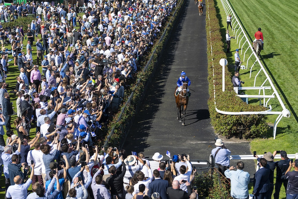 Winx-ParadeToTrack-10062018-3933 - WINX and HUGH BOWMAN make their way out to the track before winning the G1 Turnbull Stakes.  Photo by Bronwen Healy....