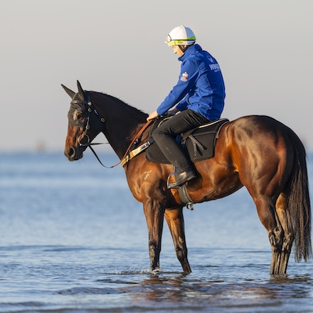 Winx-CaddenBen-10072018-5113 - Champion mare WINX visits the beach at Altona after winning the G1 Turnbull Stakes.  She is ridden by Ben Cadden.  Photo...