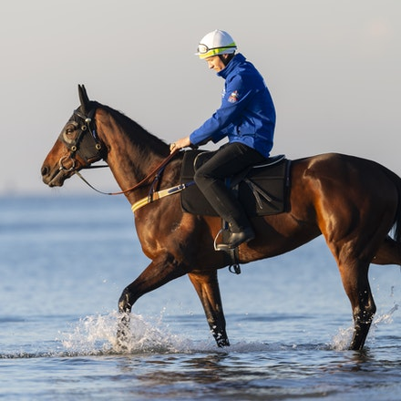 Winx-CaddenBen-10072018-5118 - Champion mare WINX visits the beach at Altona after winning the G1 Turnbull Stakes.  She is ridden by Ben Cadden.  Photo...