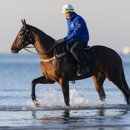 Winx-CaddenBen-10072018-5141 - Champion mare WINX visits the beach at Altona after winning the G1 Turnbull Stakes.  She is ridden by Ben Cadden.  Photo...