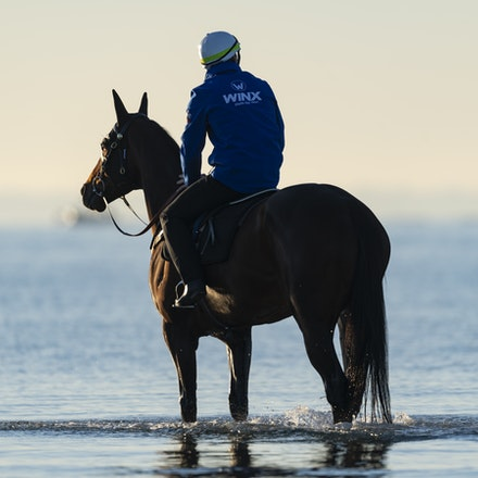 Winx-CaddenBen-10072018-5174 - Champion mare WINX visits the beach at Altona after winning the G1 Turnbull Stakes.  She is ridden by Ben Cadden.  Photo...