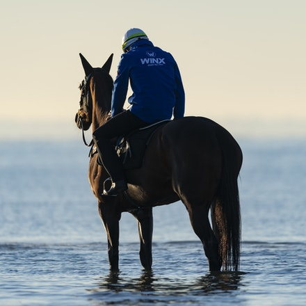 Winx-CaddenBen-10072018-5186 - Champion mare WINX visits the beach at Altona after winning the G1 Turnbull Stakes.  She is ridden by Ben Cadden.  Photo...