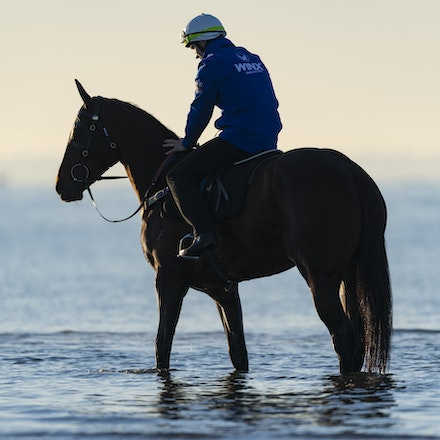 Winx-CaddenBen-10072018-5189 - Champion mare WINX visits the beach at Altona after winning the G1 Turnbull Stakes.  She is ridden by Ben Cadden.  Photo...