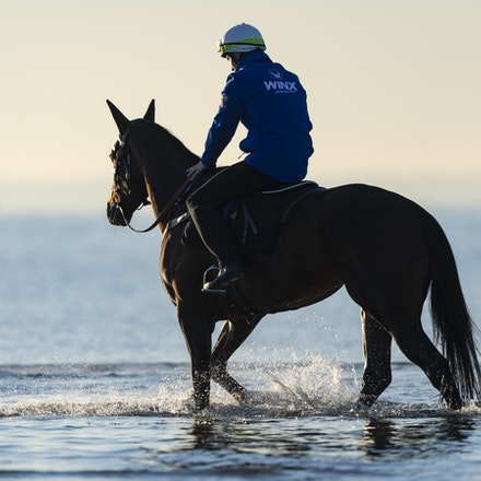 Winx-CaddenBen-10072018-5194 - Champion mare WINX visits the beach at Altona after winning the G1 Turnbull Stakes.  She is ridden by Ben Cadden.  Photo...