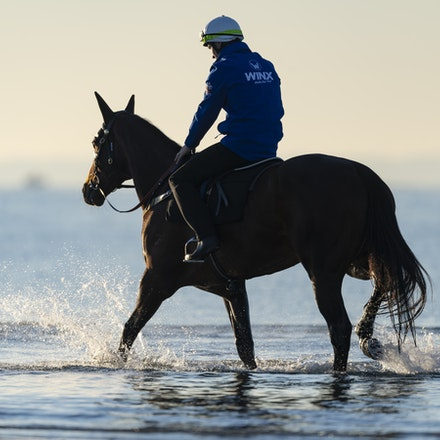 Winx-CaddenBen-10072018-5197 - Champion mare WINX visits the beach at Altona after winning the G1 Turnbull Stakes.  She is ridden by Ben Cadden.  Photo...