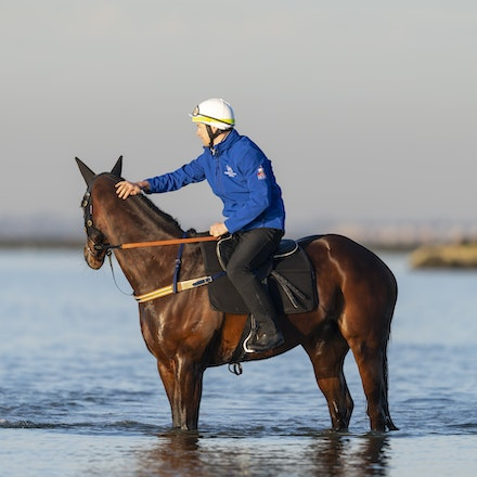 Winx-CaddenBen-10072018-5637 - Champion mare WINX visits the beach at Altona after winning the G1 Turnbull Stakes.  She is ridden by Ben Cadden.  Photo...