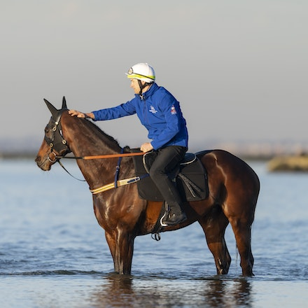 Winx-CaddenBen-10072018-5642 - Champion mare WINX visits the beach at Altona after winning the G1 Turnbull Stakes.  She is ridden by Ben Cadden.  Photo...