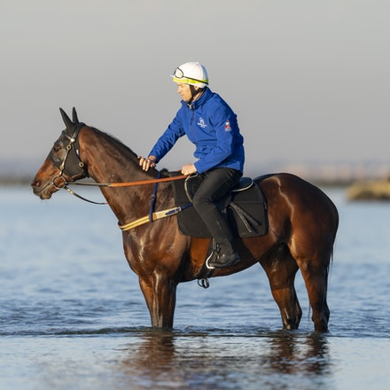 Winx-CaddenBen-10072018-5646 - Champion mare WINX visits the beach at Altona after winning the G1 Turnbull Stakes.  She is ridden by Ben Cadden.  Photo...