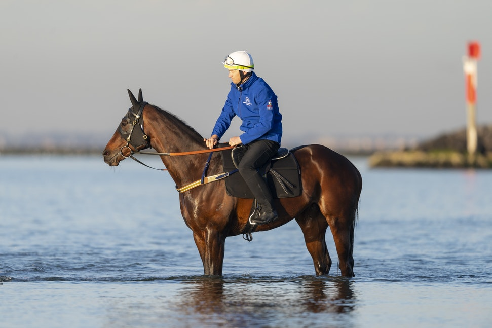 Winx-CaddenBen-10072018-5648 - Champion mare WINX visits the beach at Altona after winning the G1 Turnbull Stakes.  She is ridden by Ben Cadden.  Photo...