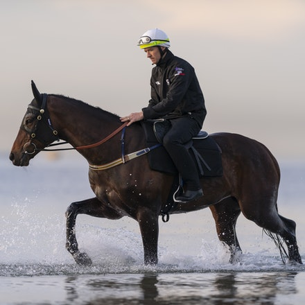 Winx-CaddenBen-10082018-7611 - WINX (ridden by Ben Cadden) enjoys a second beach session at Altona.  Photo by Bronwen Healy.  The Image is Everything -...