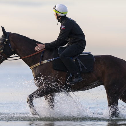 Winx-CaddenBen-10082018-7651 - WINX (ridden by Ben Cadden) enjoys a second beach session at Altona.  Photo by Bronwen Healy.  The Image is Everything -...