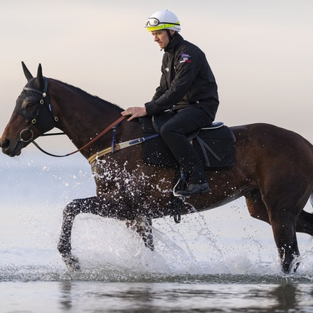 Winx-CaddenBen-10082018-7633 - WINX (ridden by Ben Cadden) enjoys a second beach session at Altona.  Photo by Bronwen Healy.  The Image is Everything -...
