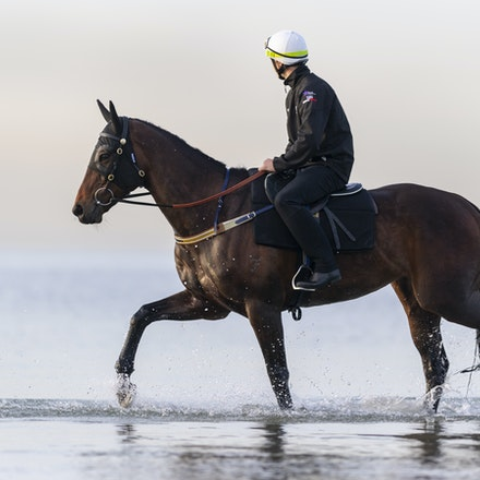 Winx-CaddenBen-10082018-8152 - WINX (ridden by Ben Cadden) enjoys a second beach session at Altona.  Photo by Bronwen Healy.  The Image is Everything -...