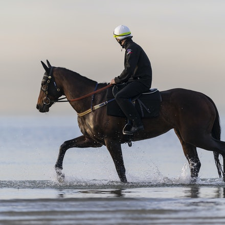 Winx-CaddenBen-10082018-8165 - WINX (ridden by Ben Cadden) enjoys a second beach session at Altona.  Photo by Bronwen Healy.  The Image is Everything -...