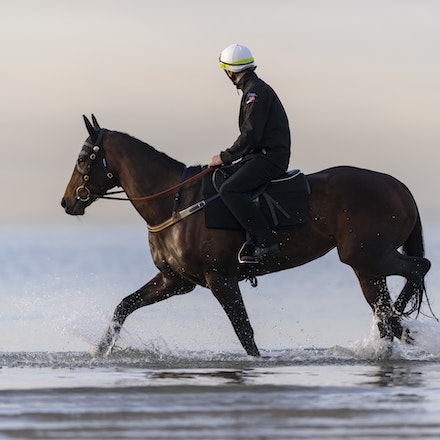 Winx-CaddenBen-10082018-8166 - WINX (ridden by Ben Cadden) enjoys a second beach session at Altona.  Photo by Bronwen Healy.  The Image is Everything -...