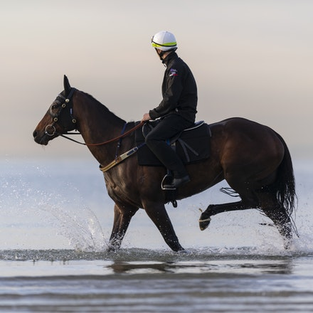 Winx-CaddenBen-10082018-8168 - WINX (ridden by Ben Cadden) enjoys a second beach session at Altona.  Photo by Bronwen Healy.  The Image is Everything -...