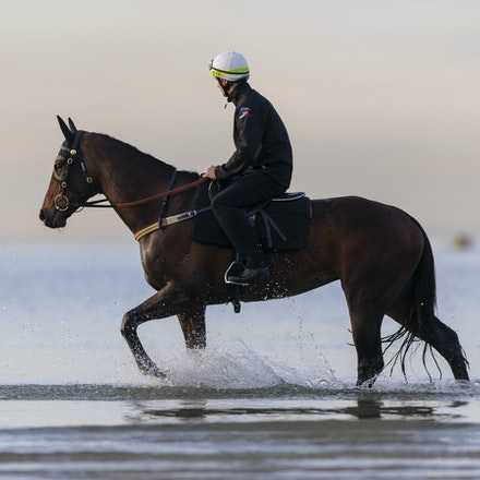 Winx-CaddenBen-10082018-8171 - WINX (ridden by Ben Cadden) enjoys a second beach session at Altona.  Photo by Bronwen Healy.  The Image is Everything -...