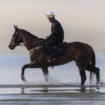 Winx-CaddenBen-10082018-8172 - WINX (ridden by Ben Cadden) enjoys a second beach session at Altona.  Photo by Bronwen Healy.  The Image is Everything -...
