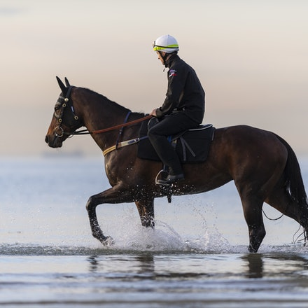 Winx-CaddenBen-10082018-8186 - WINX (ridden by Ben Cadden) enjoys a second beach session at Altona.  Photo by Bronwen Healy.  The Image is Everything -...