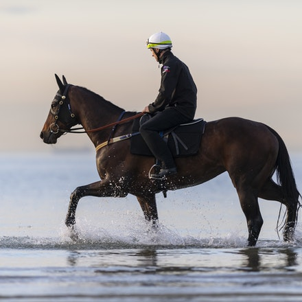 Winx-CaddenBen-10082018-8187 - WINX (ridden by Ben Cadden) enjoys a second beach session at Altona.  Photo by Bronwen Healy.  The Image is Everything -...