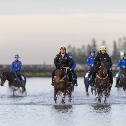 Winx-CaddenBen-Godolphin-10082018-7026 - WINX (ridden by Ben Cadden) enjoys a second beach session at Altona.  Photo by Bronwen Healy.  The Image is Everything...