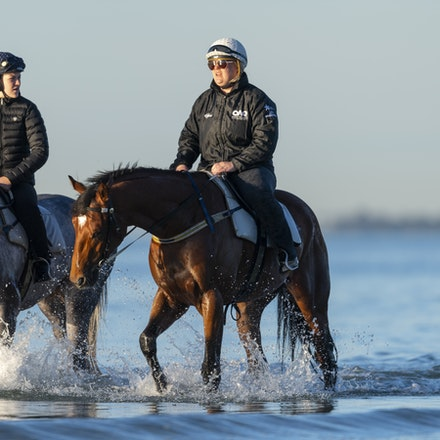 TheAutumnSun-D'argento-10142018-7488 - THE AUTUMN SUN (Redoute's Choice - Azmiyna) at Altona Beach, ridden by Johanne Taylor.  His companion is D'ARGENTO....