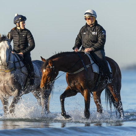 TheAutumnSun-D'argento-10142018-7489 - THE AUTUMN SUN (Redoute's Choice - Azmiyna) at Altona Beach, ridden by Johanne Taylor.  His companion is D'ARGENTO....