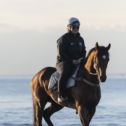 TheAutumnSun-TaylorJohanne-10142018-4115 - THE AUTUMN SUN (Redoute's Choice - Azmiyna) at Altona Beach.  Ridden by Johanne Taylor.  Photo by Bronwen Healy....