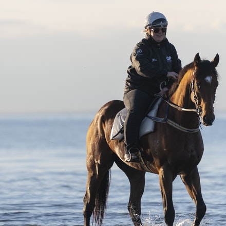 TheAutumnSun-TaylorJohanne-10142018-4119 - THE AUTUMN SUN (Redoute's Choice - Azmiyna) at Altona Beach.  Ridden by Johanne Taylor.  Photo by Bronwen Healy....