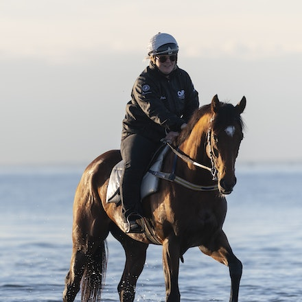TheAutumnSun-TaylorJohanne-10142018-4121 - THE AUTUMN SUN (Redoute's Choice - Azmiyna) at Altona Beach.  Ridden by Johanne Taylor.  Photo by Bronwen Healy....
