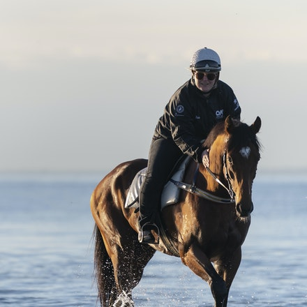 TheAutumnSun-TaylorJohanne-10142018-4124 - THE AUTUMN SUN (Redoute's Choice - Azmiyna) at Altona Beach.  Ridden by Johanne Taylor.  Photo by Bronwen Healy....