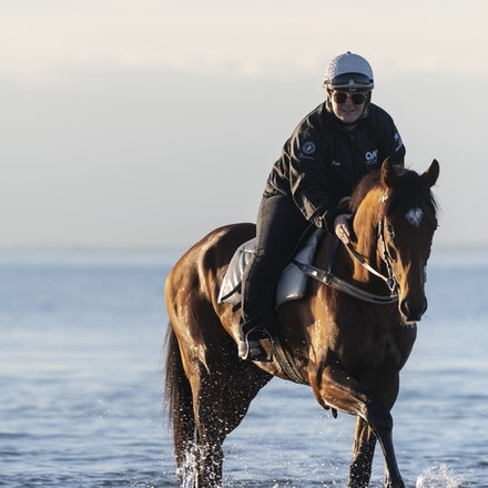 TheAutumnSun-TaylorJohanne-10142018-4125 - THE AUTUMN SUN (Redoute's Choice - Azmiyna) at Altona Beach.  Ridden by Johanne Taylor.  Photo by Bronwen Healy....