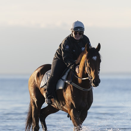 TheAutumnSun-TaylorJohanne-10142018-4127 - THE AUTUMN SUN (Redoute's Choice - Azmiyna) at Altona Beach.  Ridden by Johanne Taylor.  Photo by Bronwen Healy....