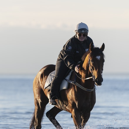 TheAutumnSun-TaylorJohanne-10142018-4128 - THE AUTUMN SUN (Redoute's Choice - Azmiyna) at Altona Beach.  Ridden by Johanne Taylor.  Photo by Bronwen Healy....