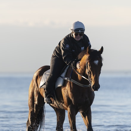 TheAutumnSun-TaylorJohanne-10142018-4130 - THE AUTUMN SUN (Redoute's Choice - Azmiyna) at Altona Beach.  Ridden by Johanne Taylor.  Photo by Bronwen Healy....
