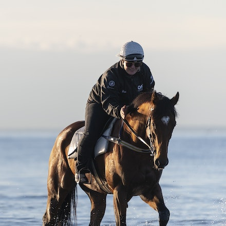 TheAutumnSun-TaylorJohanne-10142018-4131 - THE AUTUMN SUN (Redoute's Choice - Azmiyna) at Altona Beach.  Ridden by Johanne Taylor.  Photo by Bronwen Healy....