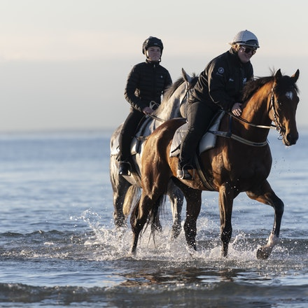 TheAutumnSun-TaylorJohanne-10142018-4152 - THE AUTUMN SUN (Redoute's Choice - Azmiyna) at Altona Beach.  Ridden by Johanne Taylor.  Photo by Bronwen Healy....