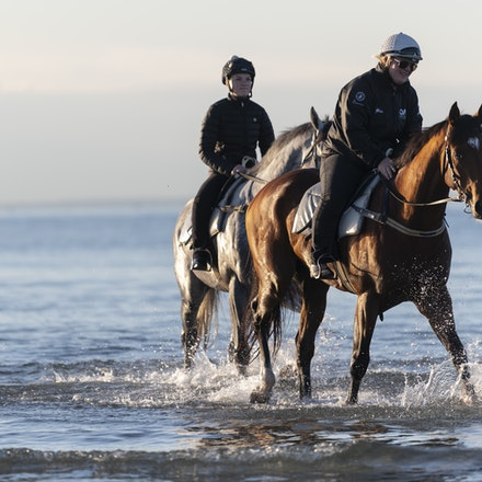 TheAutumnSun-TaylorJohanne-10142018-4153 - THE AUTUMN SUN (Redoute's Choice - Azmiyna) at Altona Beach.  Ridden by Johanne Taylor.  Photo by Bronwen Healy....