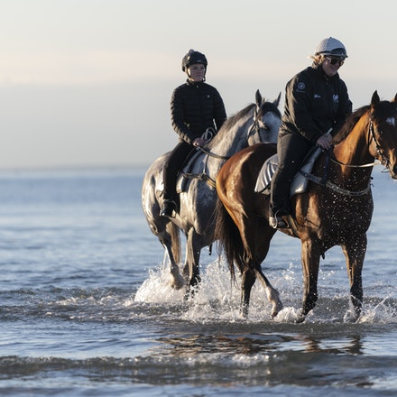 TheAutumnSun-TaylorJohanne-10142018-4154 - THE AUTUMN SUN (Redoute's Choice - Azmiyna) at Altona Beach.  Ridden by Johanne Taylor.  Photo by Bronwen Healy....